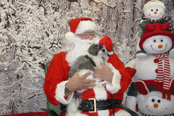 Santa Paws 2015 |Humane Society of Douglas County