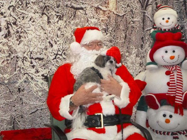 Santa Paws | Humane Society of Douglas County