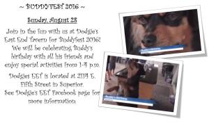 Buddyfest 2016